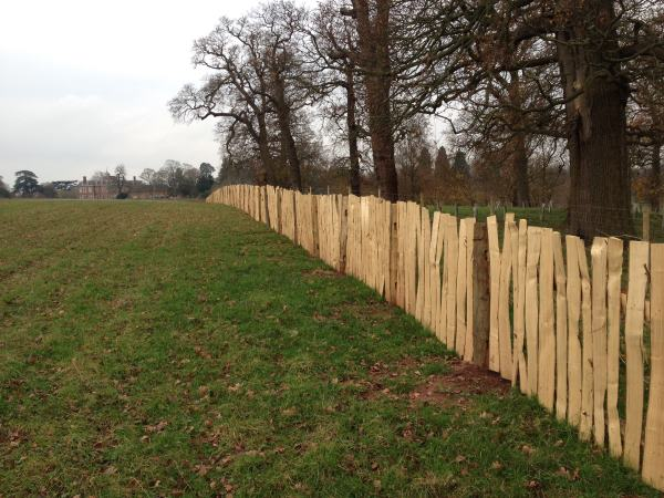 cleft fencing hanbury hall 3